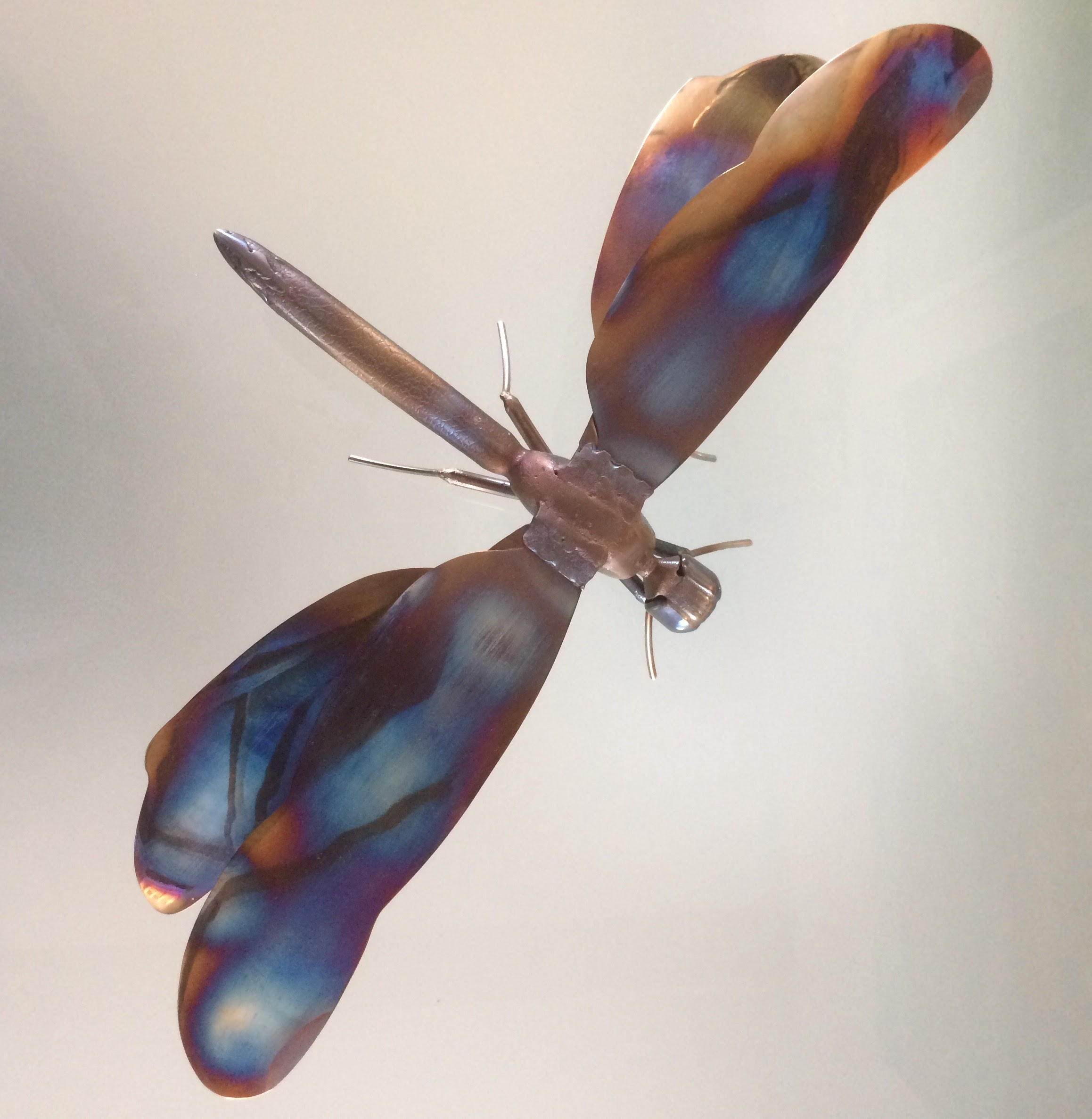 2.Dragonfly